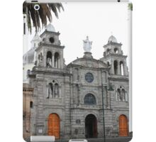 Statue of the Virgin Mary on a Church iPad Case/Skin