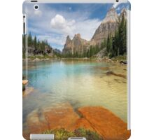 beautiful picture iPad Case/Skin