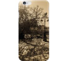 The ancient tree and its shadow iPhone Case/Skin