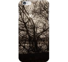 A Tree in silhouette iPhone Case/Skin