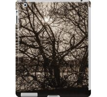 A Tree in silhouette iPad Case/Skin