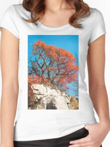 Autumn Colours in the Carso Women's Fitted Scoop T-Shirt