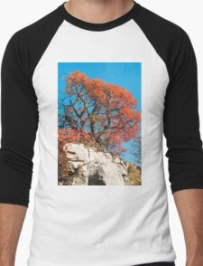 Autumn Colours in the Carso Men's Baseball ¾ T-Shirt