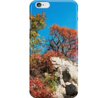 Autumn Colours in the Carso iPhone Case/Skin