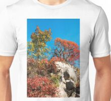 Autumn Colours in the Carso Unisex T-Shirt