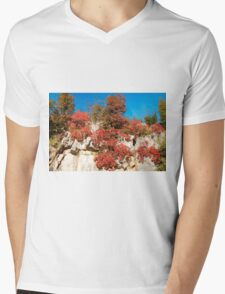 Autumn Colours in the Carso Mens V-Neck T-Shirt
