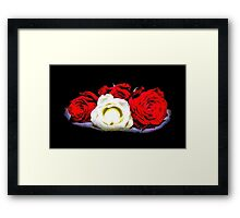 Painted Red and White Roses Framed Print