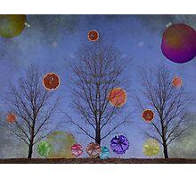 Planet Grapefruit Photographic Print