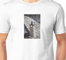 Chimney in Mostar Unisex T-Shirt