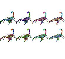 Scorpion pattern Photographic Print