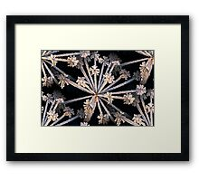 Frozen Plant Abstract Framed Print