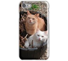 Two Cats in Garden Tub iPhone Case/Skin