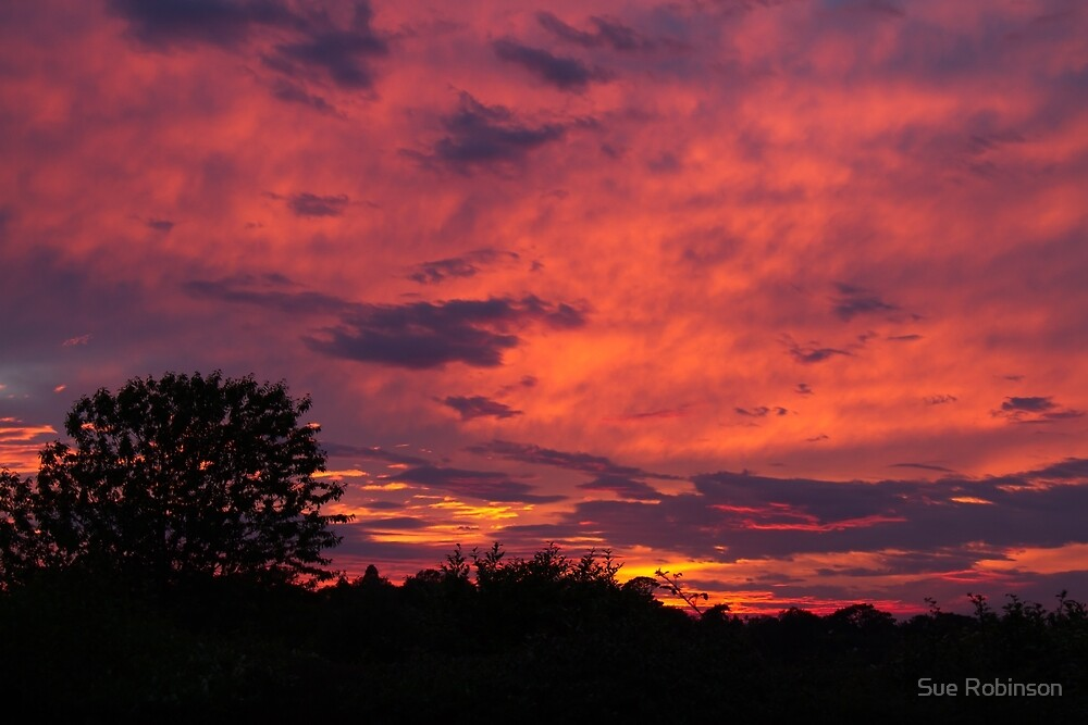 Summer Sunset with Silhouettes by Sue Robinson