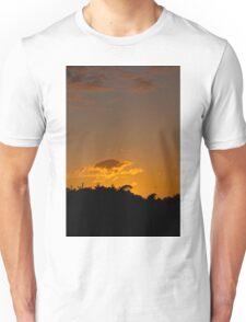 Summer Solstice Sunset 2011 Unisex T-Shirt