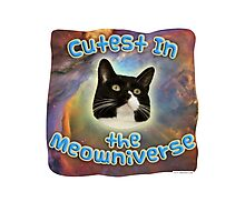 Cutest Meowniverse Photographic Print