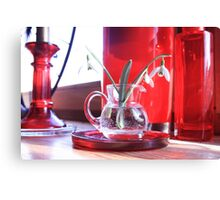 Red Decoration - Macro Photography Canvas Print