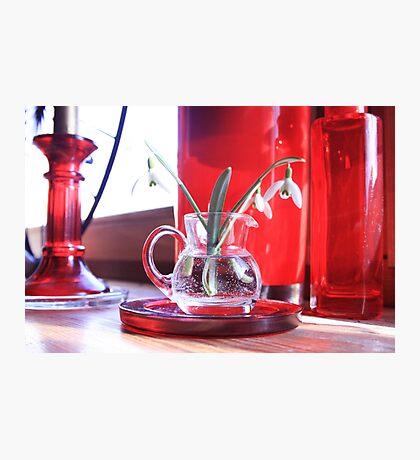 Red Decoration - Macro Photography Photographic Print