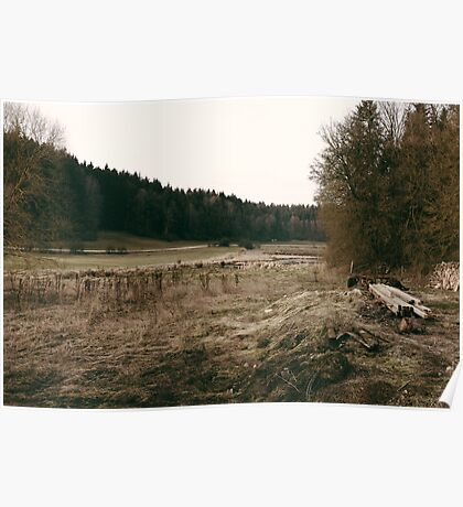 Rural forest landscape photography Poster