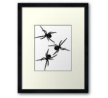 Spider, Spider, Spider Framed Print