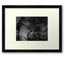 Carlsbad Caverns Framed Print