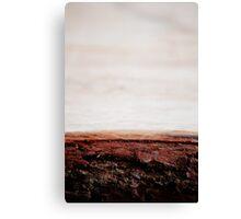Bark beach Canvas Print