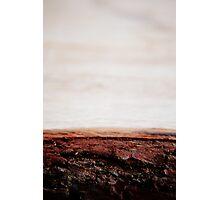 Bark beach Photographic Print
