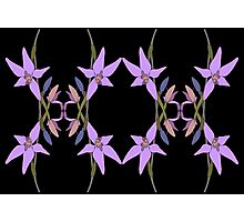 Pink Fairy Native Orchid Mirror Design Photographic Print