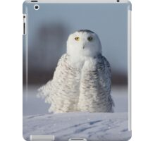Saint Snowy iPad Case/Skin