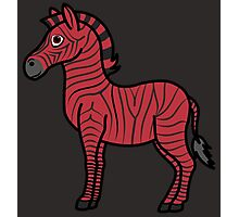 Red Zebra with Black Stripes Photographic Print