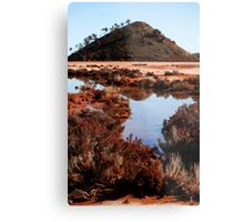Samphire Reflections Metal Print