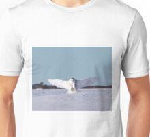 Air brakes Unisex T-Shirt