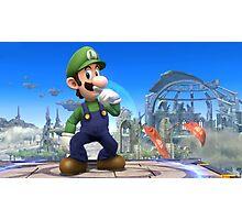 Super Smash Bros. Luigi Photographic Print