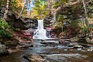 A Touch Of Autumn At Sheldon Reynolds Falls by Gene Walls