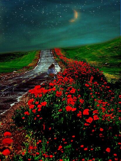 Poppy Picker by Elizabeth Burton