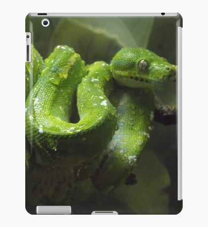 Emerald Eye iPad Case/Skin