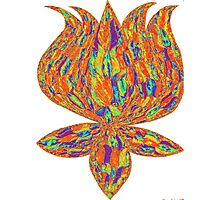 lotus psychedelic Photographic Print