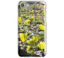 Some autumn green leaves iPhone Case/Skin