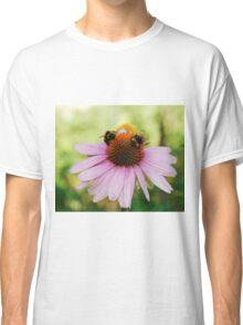 Echinacea Purpurea with Bees Classic T-Shirt