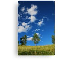 Trees with Cumulus Fractus Canvas Print