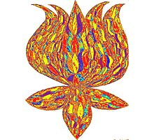 trippy lotus Photographic Print