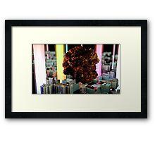 Cluster 02 Framed Print
