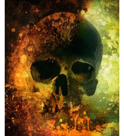 Male skull - warm version Sticker