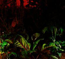 Garden Solar Lights in the Dark Sticker