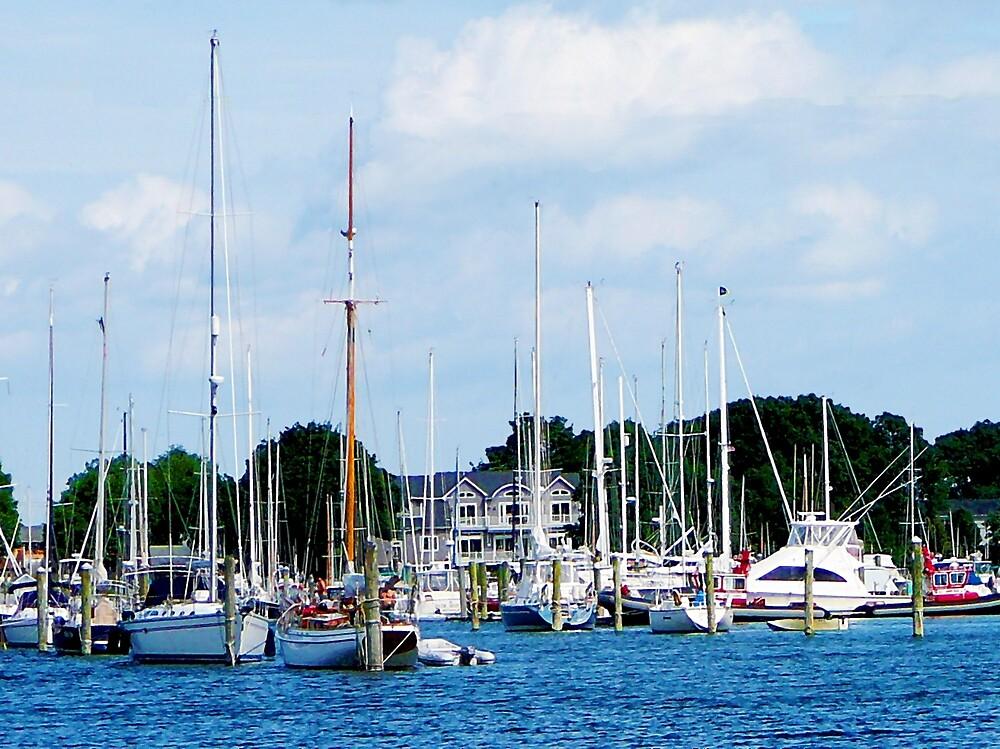 Village Dock at Wickford, RI by Susan Savad