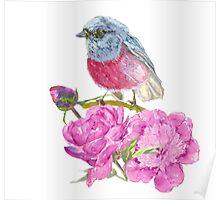 bird on a flower   Poster