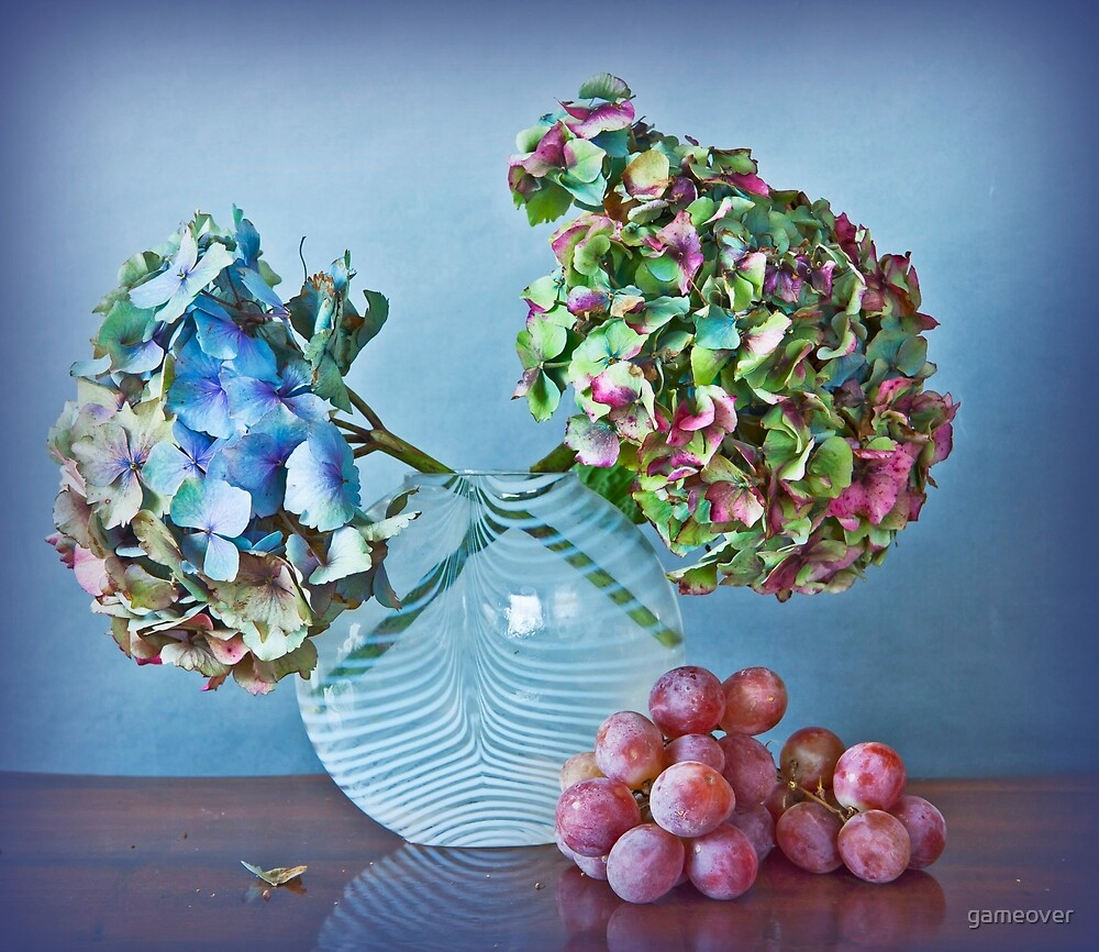 Autumnal still life: grapes and dry hydrangea flowers by Luisa Fumi