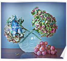 Autumnal still life: grapes and dry hydrangea flowers Poster