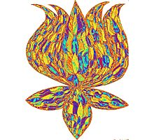 hippie lotus Photographic Print