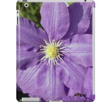 Spring Flower Series 43 iPad Case/Skin