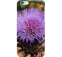 Giant Thistle Flower 3 iPhone Case/Skin